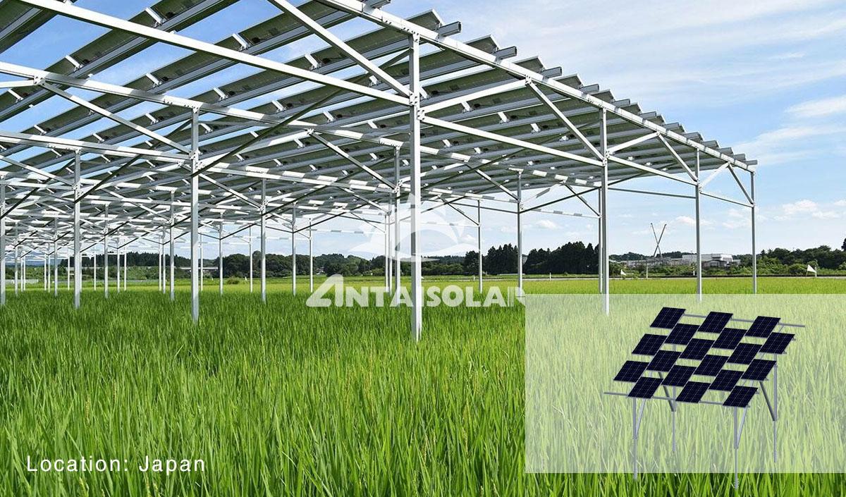 安泰农业支架解决方案案例
